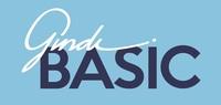 גינדי BASIC, יבנה